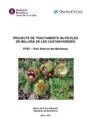 projecte de tractaments silvícoles de millora de les castanyaredes