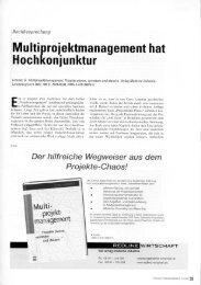 Kritik Prof. Dr. Heinz Schnelle - IPO