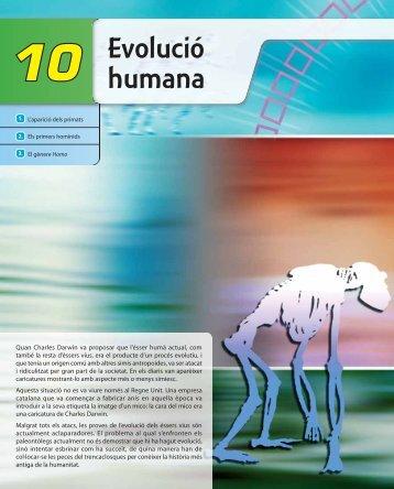 10 Evolucio̕ humana ESO4B.indd - McGraw-Hill
