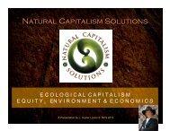Natural Capitalism Solutions
