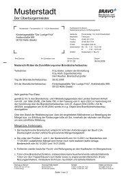 Vordruck Brandschau - IT-Consult Halle GmbH