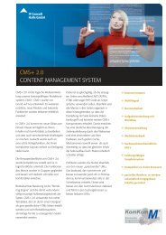 Flyer CMS+ - IT-Consult Halle GmbH