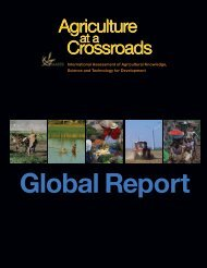 Agriculture%20at%20a%20Crossroads_Global%20Report%20(English)
