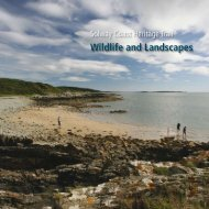 Wildlife and Landscapes