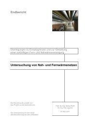 Untersuchung von Nah- und Fernwärmenetzen - Institut für ...
