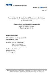 Abschlussbericht für das Institut für Wärme und Oeltechnik e.V. (IWO ...