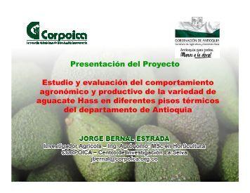Estudio y evaluacion del comportamiento del cultivo de aguacate hass