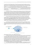 Pràctica 3. Routing Information Protocol - Page 6