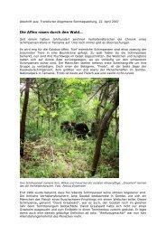 Die Affen rasen durch den Wald…