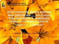 Efectividad de Benciladenina más Giberelina 4+7 aplicadas