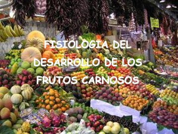 Fis.Vegetal - Fruto