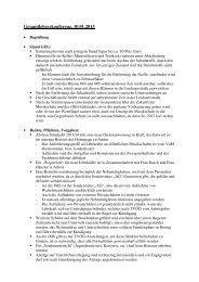 Protokoll als pdf-Datei