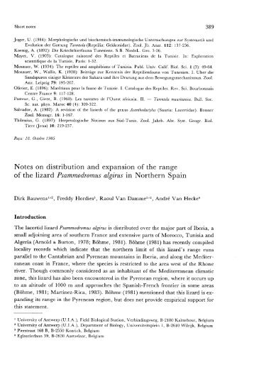 389 Joger, U. (1984): Morphologische und biochemisch ... - Lacerta