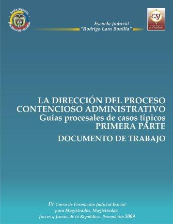 La Dirección del Proceso Contencioso Administrativo
