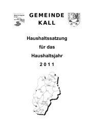 Haushaltsplan 2011 - Gemeinde Kall