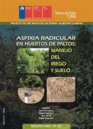 asfixia radicular en huertos de paltos: manejo del ... - Platina - INIA
