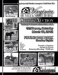 12 noon Saturday, March 17, 2012 - Professional Auction Services ...