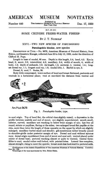 Nichols, J. T. 1930. Some Chinese freshwater fishes. XXVI. Two new ...