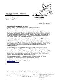 Nachwuchs im Netz gesucht - Katzenhilfe Stuttgart eV