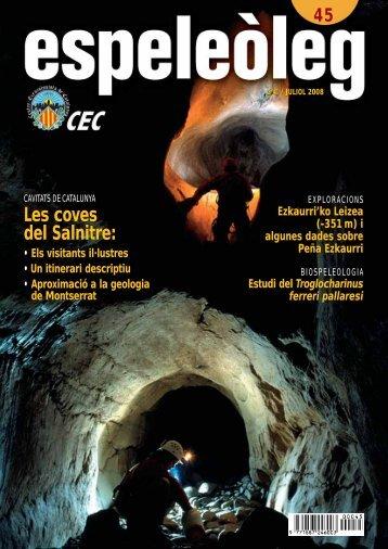 Les coves del Salnitre