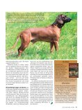 Der Spezialist - lmzd.lt - Seite 6