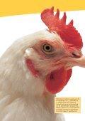 Nobilis Salenvac T - MSD Animal Health Nederland - Page 6