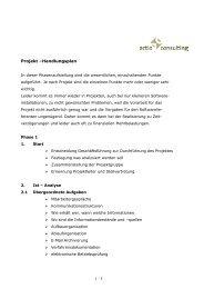 Projekt Handlungsplan Phasen 1 - actio consulting Gmbh