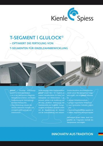 T-SegmeNT | glUlOck® - Kienle + Spiess