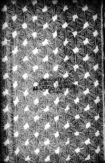 En la pampa [microform] : narraciones guachescas de la república ...