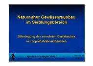 Naturnaher Gewässerausbau im Siedlungsbereich - Kindsgrab GmbH