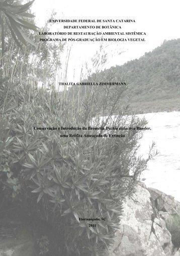 Dissertação Zimmermann, T.G. 2011 - UFSC