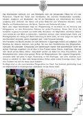Informationsmappe für Musikgruppen und Presse - Die Kivelinge - Seite 3