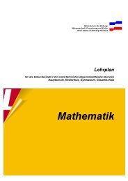 Sekundarstufe Lehrplan Mathematik
