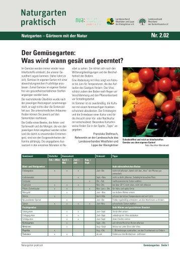 Der Gemüsegarten: Was wird wann gesät und geerntet?