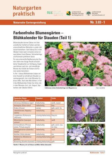 Blühkalender für Stauden (Teil 1) - und Umweltschutz-Akademie ...