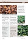 Bodenpflege nach dem Vorbild der Natur: Mulchen - und ... - Page 2