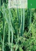 Artenvielfalt - Bundesverband Deutscher Gartenfreunde e.V. - Seite 4