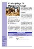 Mai 2010 - Kleintierpraxis Kuntze - Seite 4