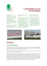 Télécharger - Parc naturel régional de Camargue