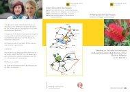 Fortbildungsveranstaltung für Sozialarbeiter, PDF ... - Klinik Tettnang