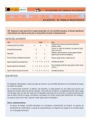 DESCRIPCIÓN DATOS DEL ACCIDENTE - Bienvenidos al Portal de ...