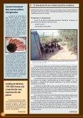 El entusiasmo de una criadora de pollos ecológicos - Avicultura - Page 2