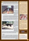 El entusiasmo de una criadora de pollos ecológicos - Avicultura - Page 3