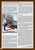 El entusiasmo de una criadora de pollos ecológicos - Avicultura - Page 4