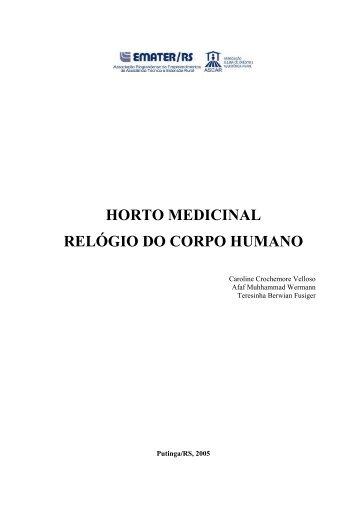 HORTO MEDICINAL RELÓGIO DO CORPO HUMANO - Projeto ...