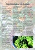numero14 - Giardinaggio indoor - Page 5