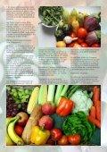 numero14 - Giardinaggio indoor - Page 6