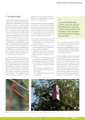 DOSSIER - RuralCat - Page 5