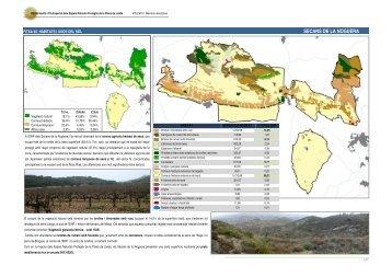 SECANS DE LA NOGUERA - Valors Naturals de les ZEPA dels ...