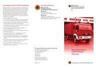 Dekontaminations-Lastkraftwagen Personen, Faltblatt (PDF, 289KB)